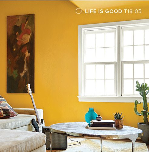 PPG Paint, Life Is Good T-18-05