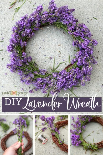 Lavender Wreath, GardenTherapy.com
