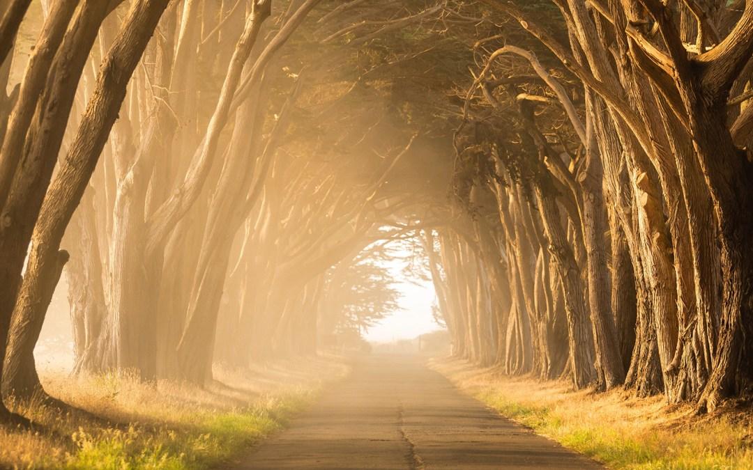 Retirement is a path, not a door