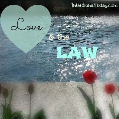 Love and The Law
