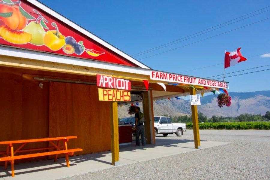 British Columbia fruit stand  Intentional Travelers