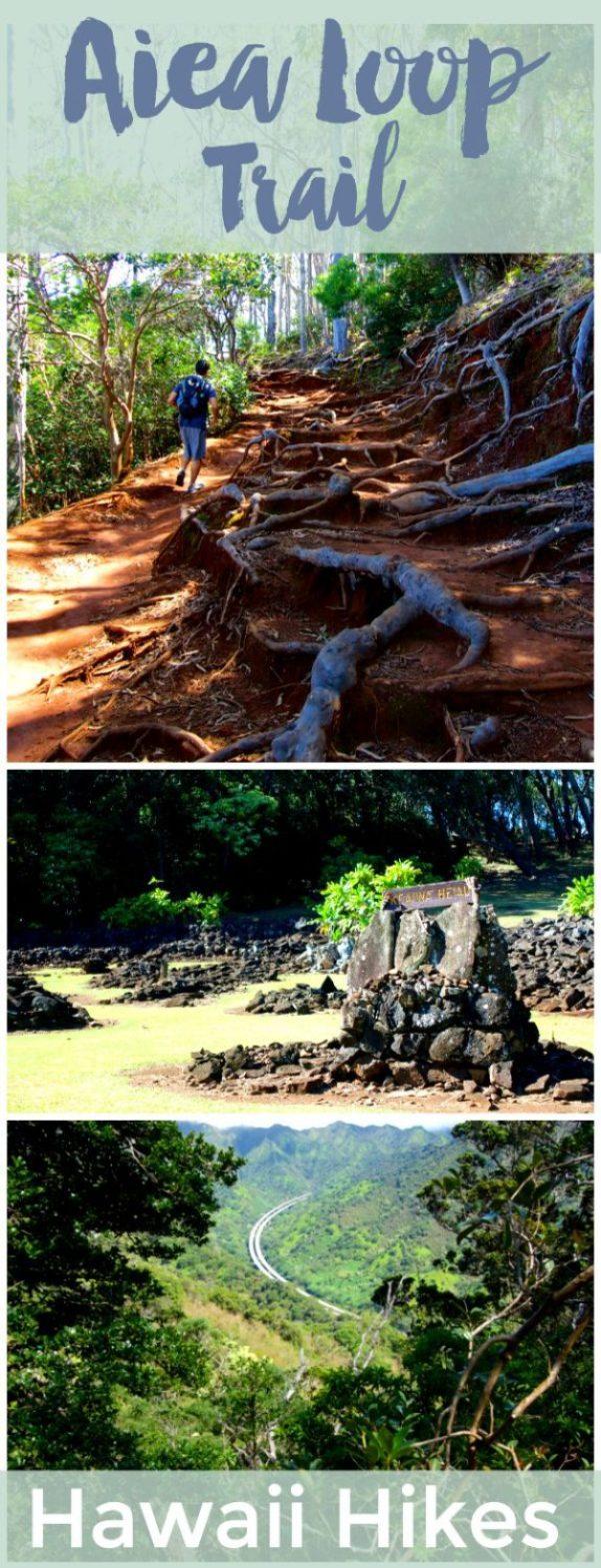 Tips for hiking the Aiea Loop Trail on Oahu | Hawaii Hikes