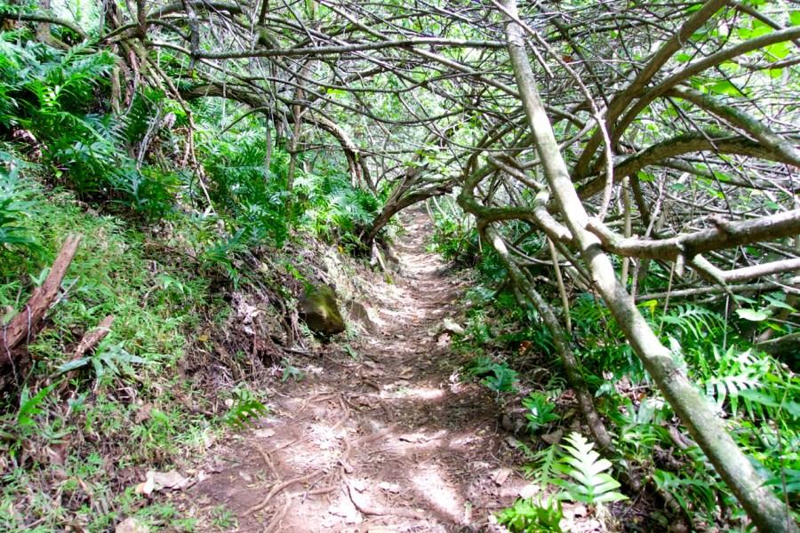 Aina Haina Hike - Oahu, Hawaii | Intentional Travelers