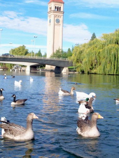A College Student's Guide to Spokane, Washington | Intentional Travelers