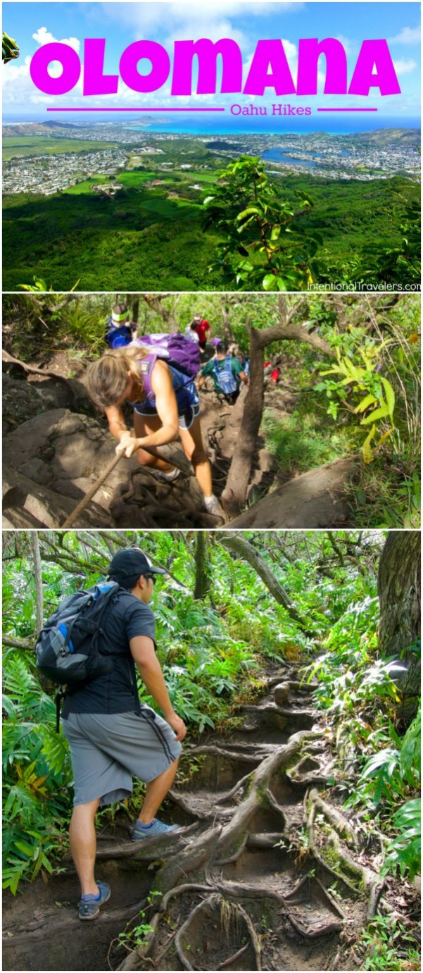Tips for hiking Olomana trail on Oahu | Hawaii Hikes