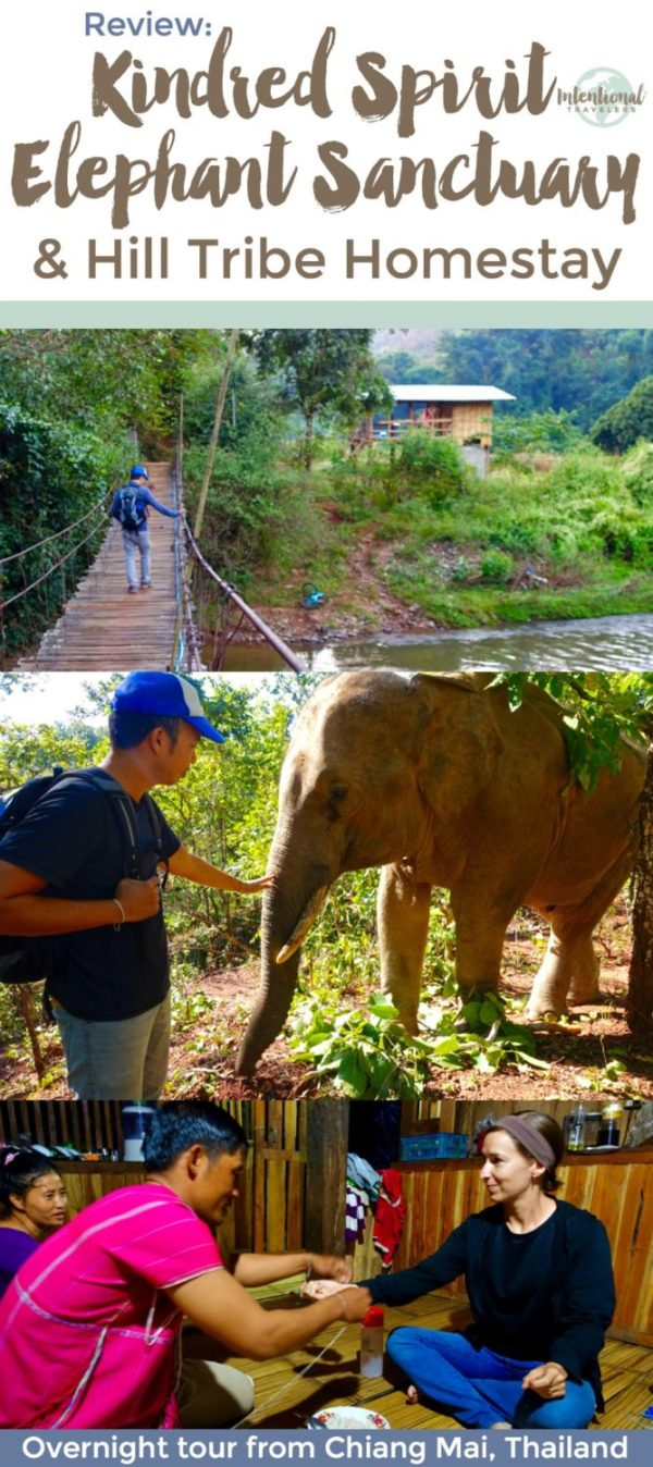 See elephants in their natural environment and experience life in a rural hill tribe village in the Mae Cham district outside of Chiang Mai, Thailand - helpful tour review | Intentional Travelers