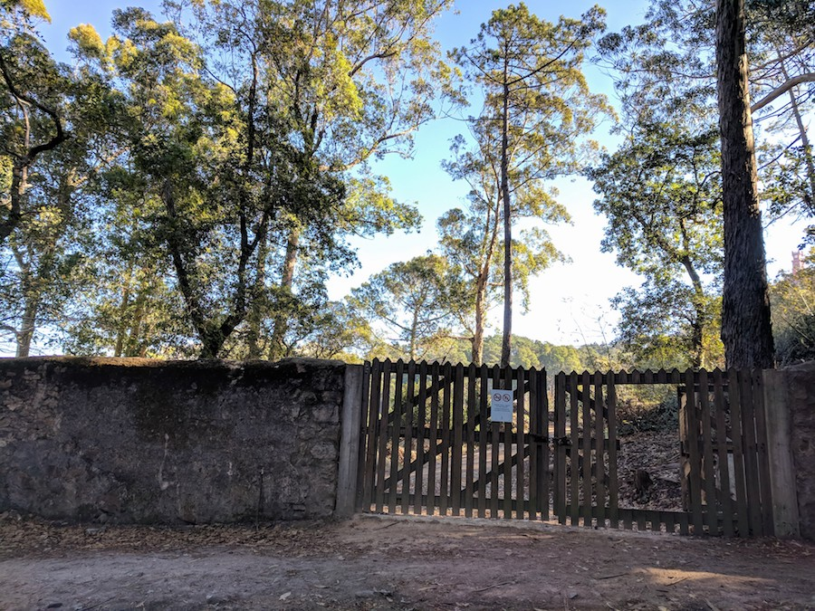 Hiking Sintra Day Trip | Intentional Travelers
