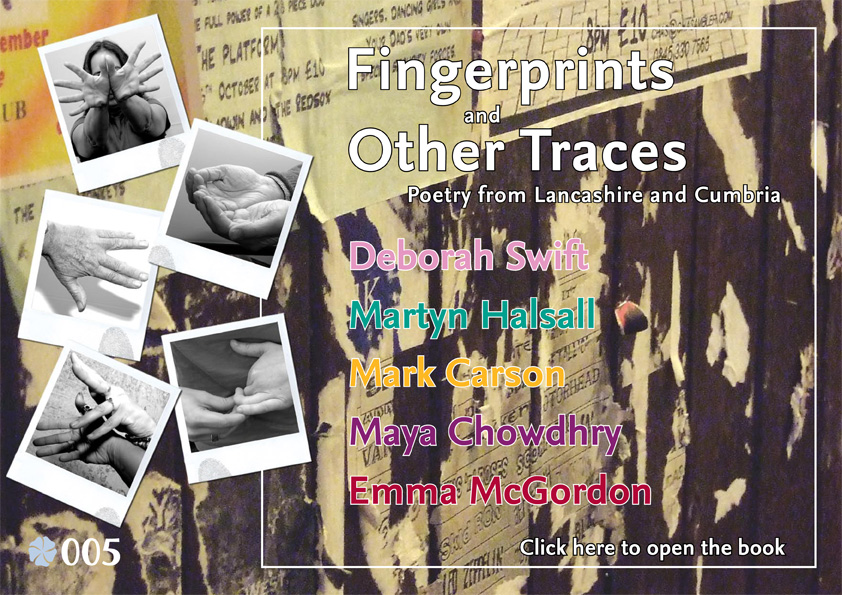 Fingerprints and Other Traces, Flax 005