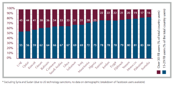Demographic Breakdown of Facebook Users in the Arab Region (Dec. 2010)