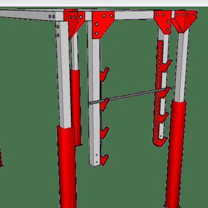 Salmon_Ladder