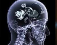 Beyin oksijen