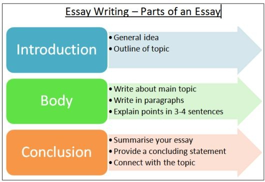 The Different Types of Essay Format LANGUAGE LEARNING ONLINE