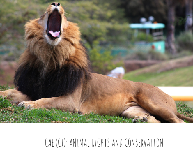 CAE (C1)- ANIMAL RIGHTS AND CONSERVATION
