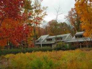Autumn Willow School Buildings