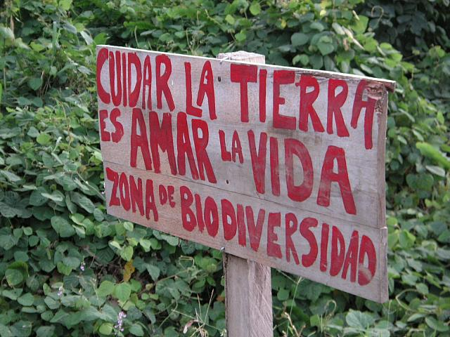 """Taking Care of the Land is Loving Life"" biodiversity zone (photo: Carolina Peace)"