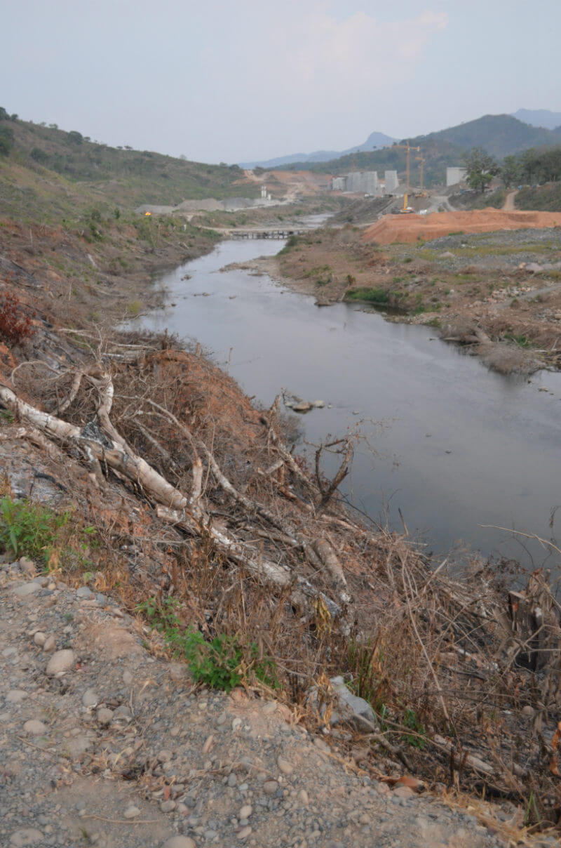 A planned waterline amidst cleared forest