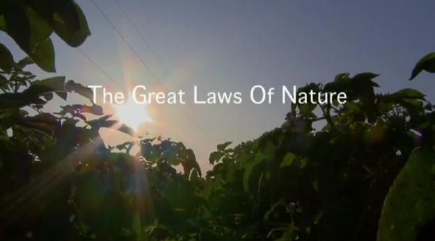 the great laws of nature