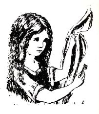 One of the author's own illustrations.
