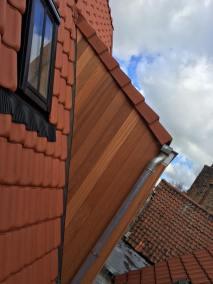 Afzelia Brugge