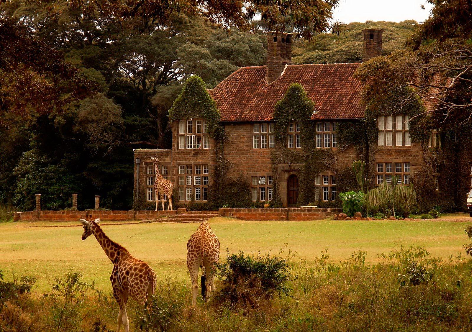 Giraffe Manor, Jirafa, Kenia, Nairobi, Hotel