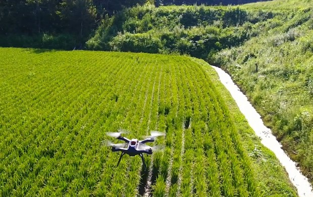 Smart rice? Advancements try to modernize farming in Asia - Interesting Asia