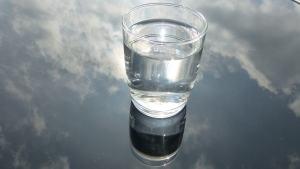 philip-larkin-water