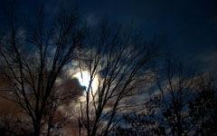 January Night Sky wallpaper