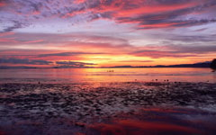Comox Sunrise wallpaper