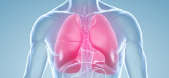 Resultado de imagem para Doenças respiratórias