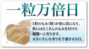 三浦理恵子13