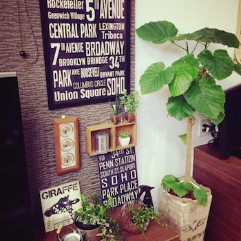 男前インテリアでポスターと観葉植物を飾った部屋の空間