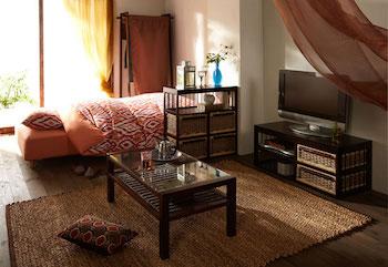 ワンルームを上手く間仕切りした一人暮らしの部屋のテレビ周りの画像
