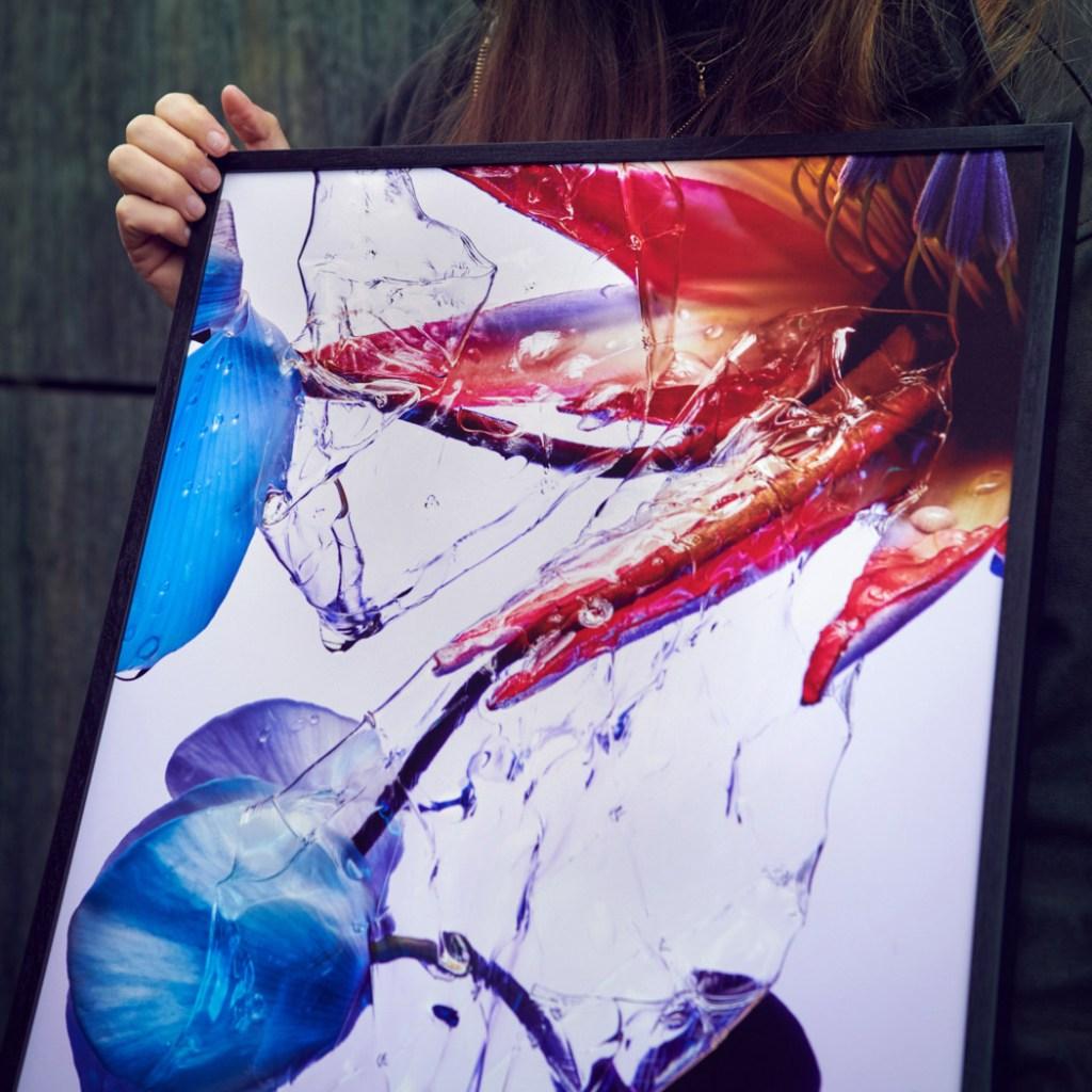 studio vegete sign blumen foto poster studio siebrecht