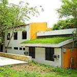22-ideas-techos-verdes-12