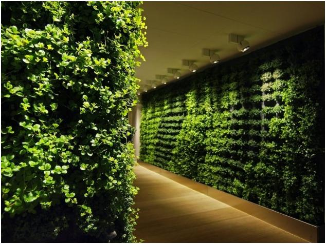Interior Plant Walls by Greenworks  Sweden   An Interior Fanatic Visit