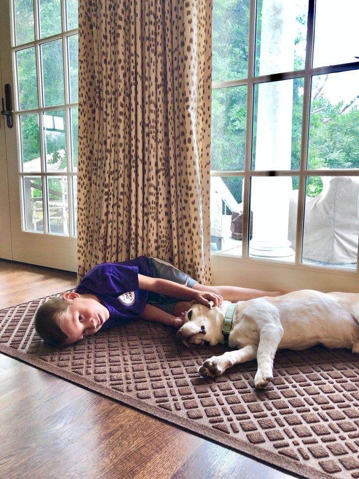 Friday Family-Friendly Find: LL Bean Waterhog Mat | Interiors for Families | Blog of Kelly Rogers Interiors