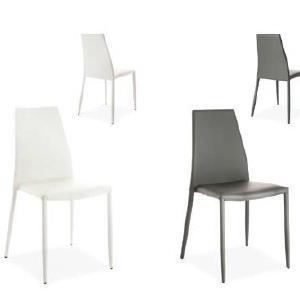 Lion chairs - scaune moderne