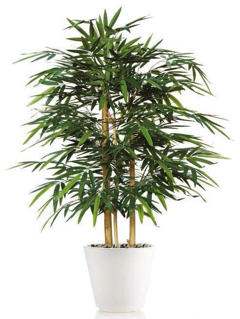 Bamboo Wild Bush - plante artificiale, plante decor, plante lux