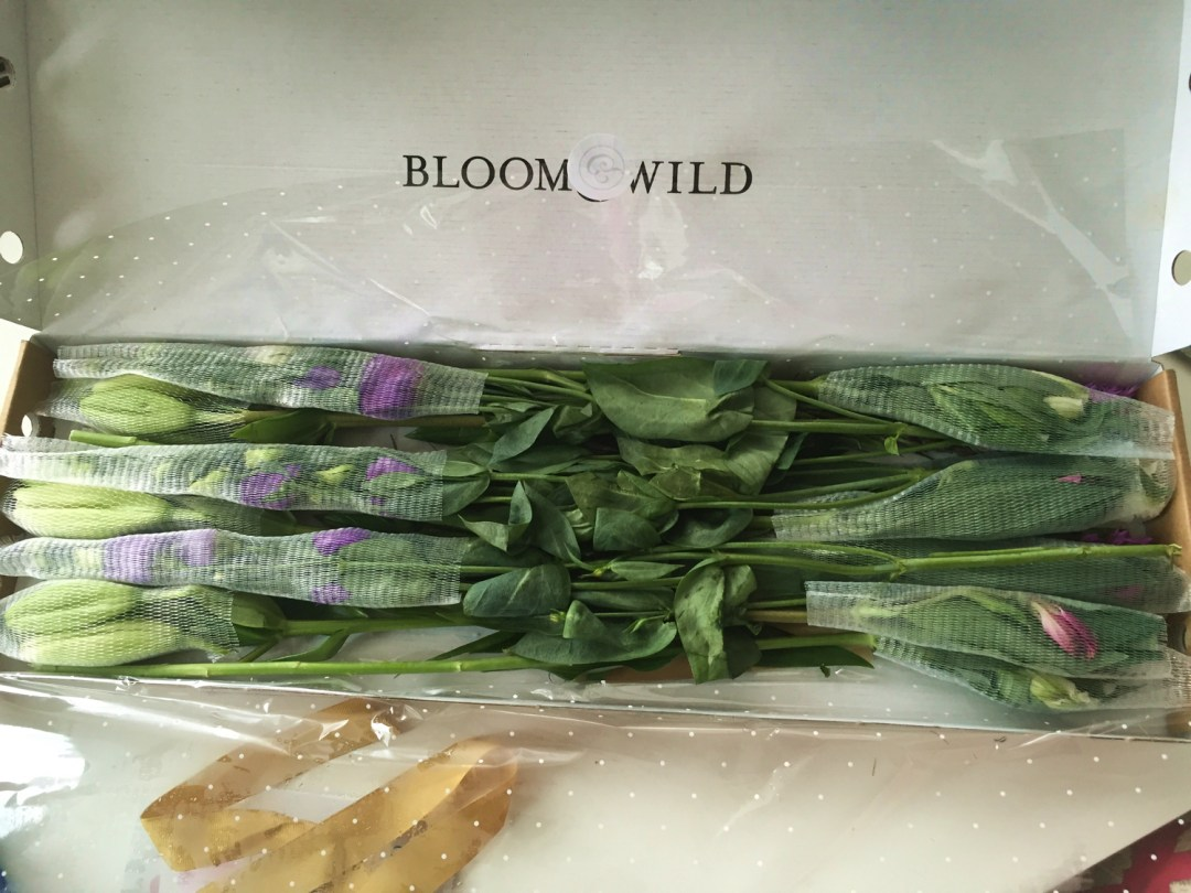 Bloom and Wild Flowers in box