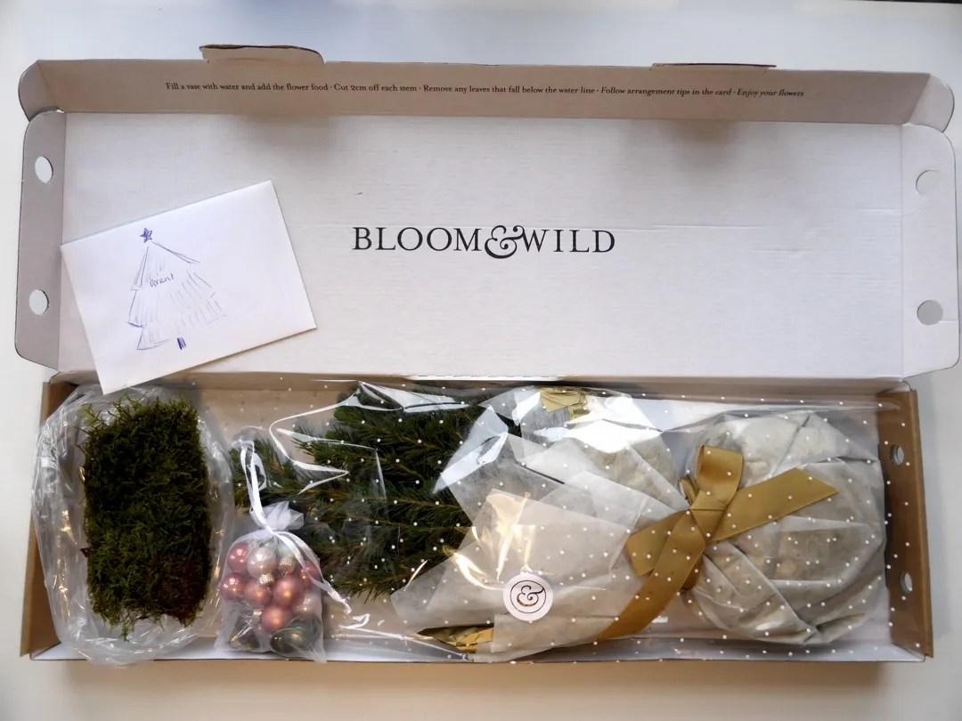 bloom and wild christmas tree christmas tree in a box - Christmas Tree In A Box