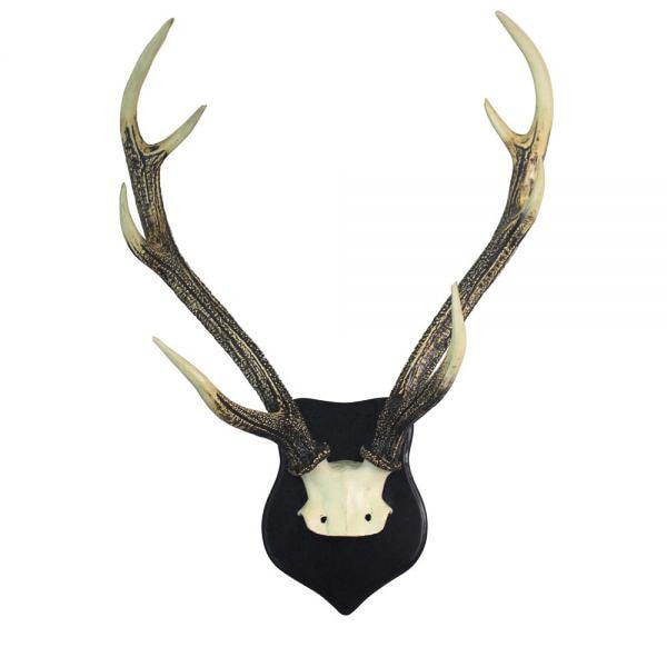 ptmd wanddecoratie schedel poly zwart