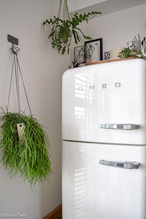 plantjes bij smeg koelkast