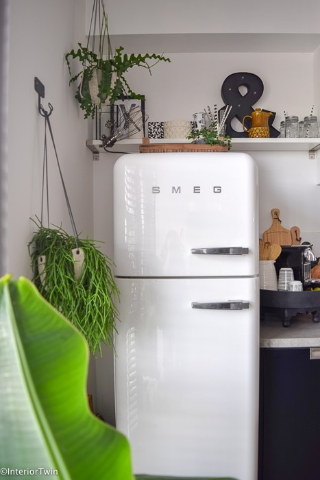 plantjes bij witte smeg koelkast