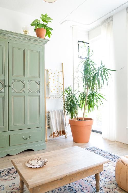 groene kast met grote plant @mirjam_hart