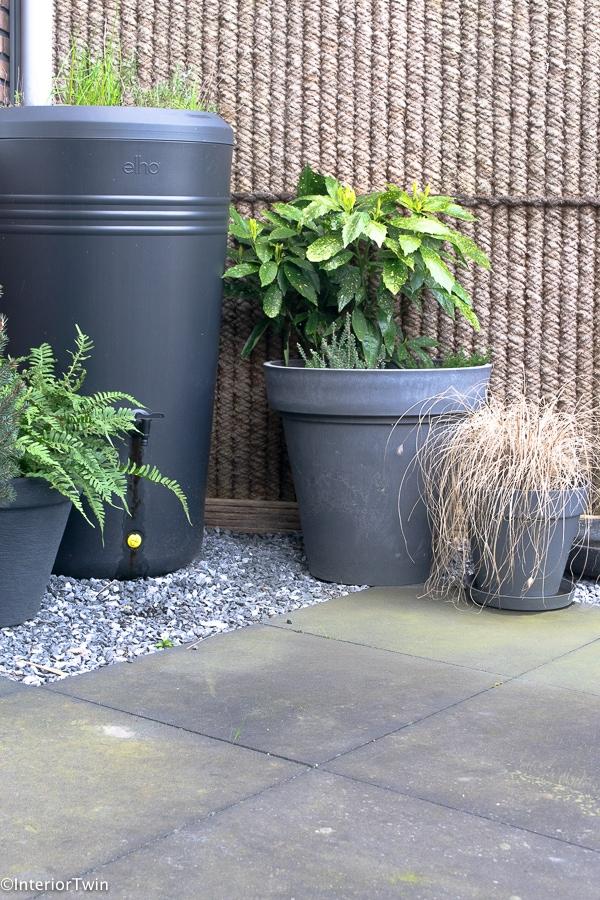 groene aanslag milieubewust verwijderen tuin tegels