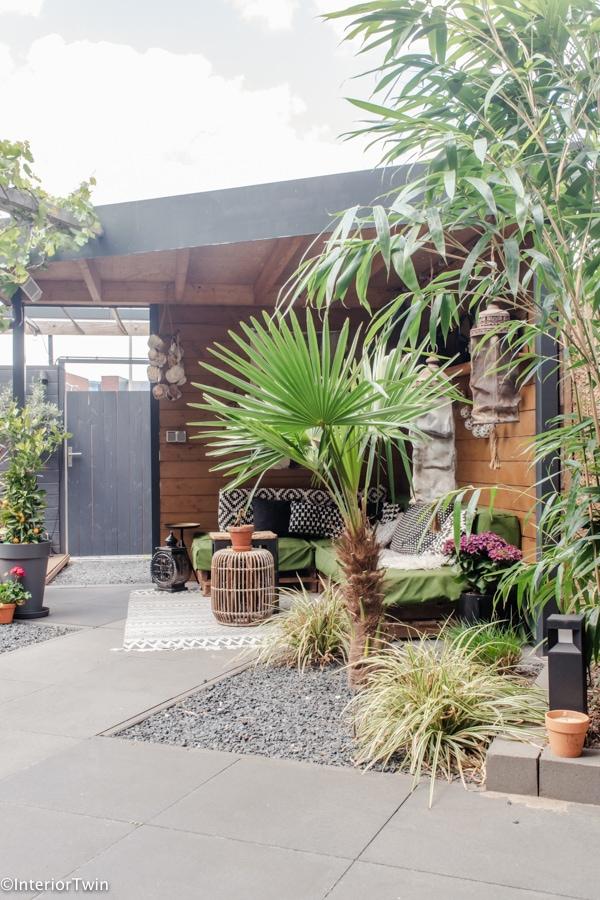 tropische en exotische planten in de tuin
