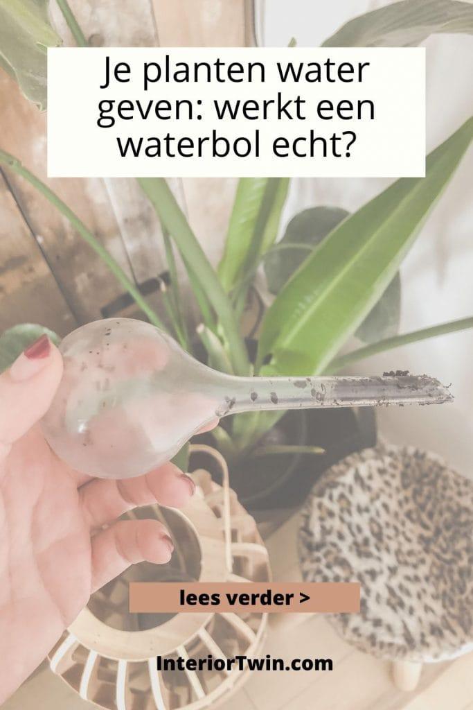 werkt een waterbol om je planten water te geven echt?