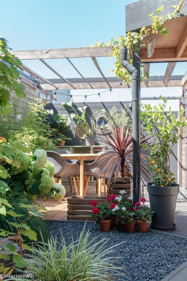 planten in kleine tuin