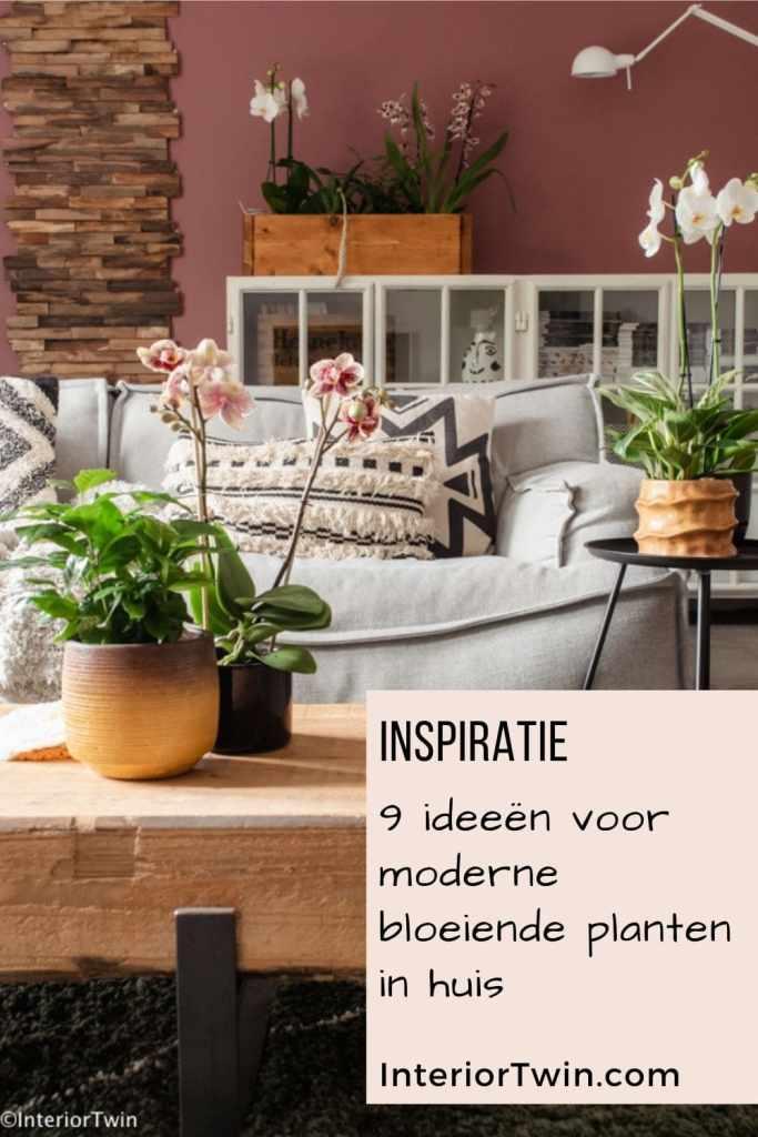 moderne bloeiende planten