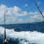 Enjoy Sportfishing in the Riviera Nayarit